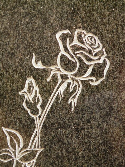 Free photo: Rose, Tombstone, Spiny, Plant - Free Image on
