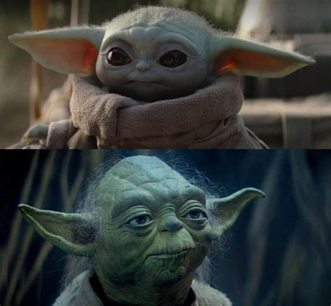 RECAP — Check out this Baby Yoda meme, you must   Video