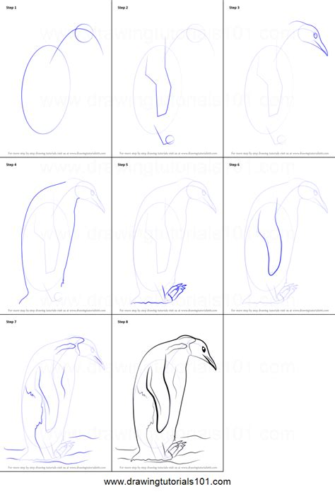 How to Draw an Emperor Penguin printable step by step