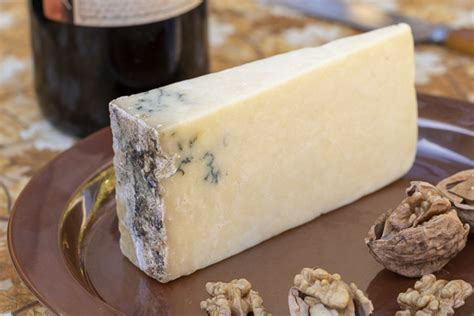 Moldy Cheese: 7 Benefits of Gourmet Product | ArticleCube