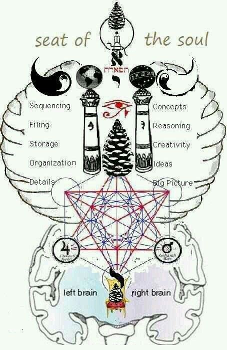 Pin by Sirius Element on University of Consciousness