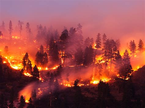 Where there's wildfire smoke, there may be heart problems