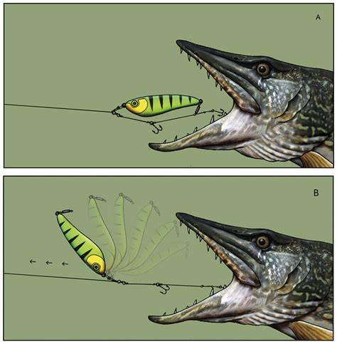 Off the Scale magazine - novel lure set up lands more pike